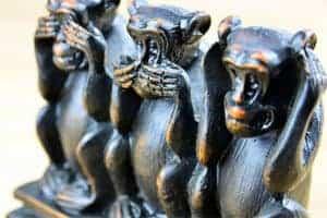 monkeymanagement