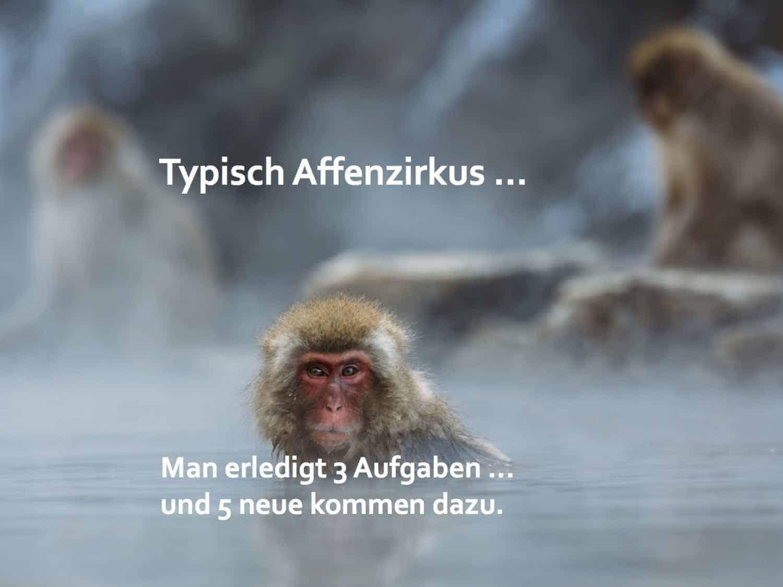 Willkommen im Affenzirkus! Impuls Seminare, Monkey Management