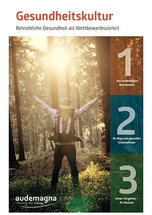 Gesundheitkultur_Flyer
